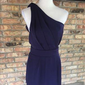 BCBG Dress NWT Size 4